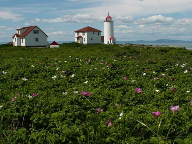 Faro Ile Verte