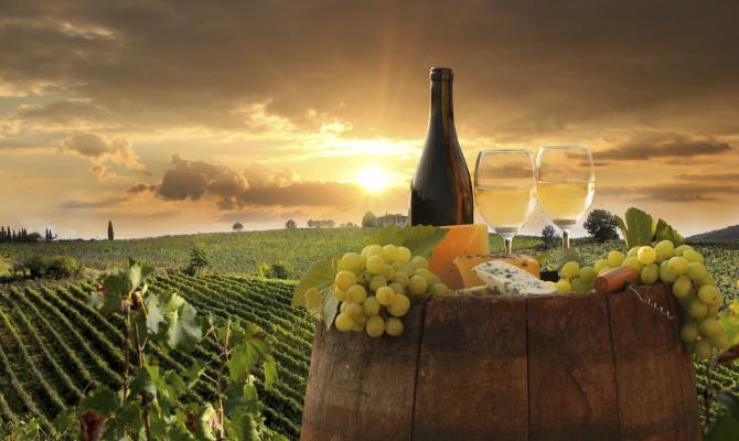 Toscana.Wine Architecture: 25 cantine d'autore