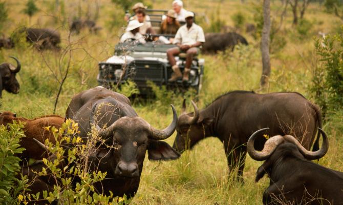 Viaggi all'avventura in Africa