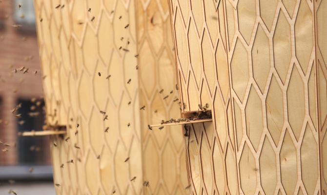 L'apicoltura urbana abbraccia il design