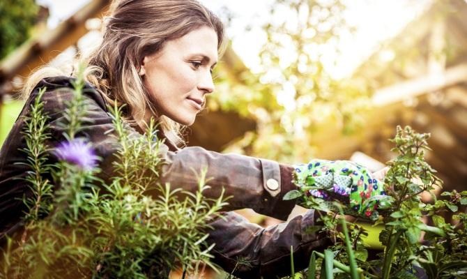 Gardening, il pollice verde che appassiona