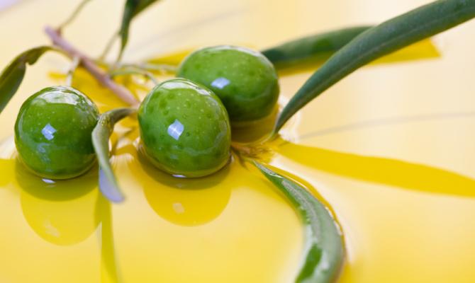 ONAOO, la scuola per assaggiatori d'olio d'oliva