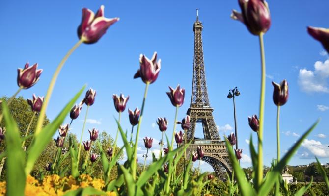 Pasqua a Parigi, tour eiffel, tulipani