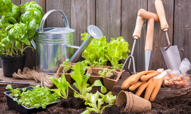Progettare un giardino low cost stile