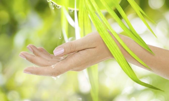 Mani e natura