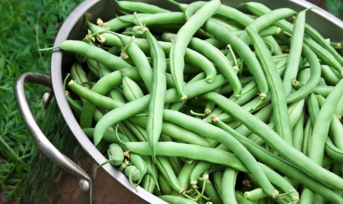 Verdure di stagione: i fagiolini