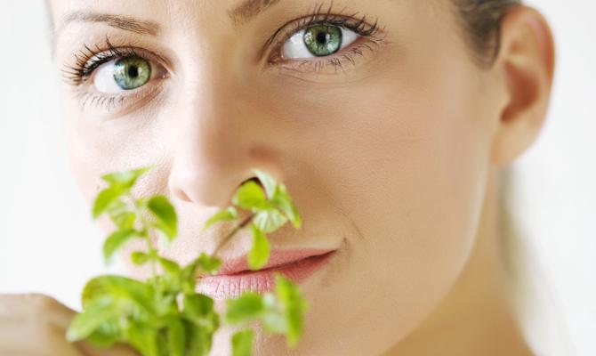Basilico, profumato ingrediente di bellezza