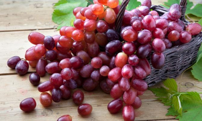 Uva, la regina dell'autunno