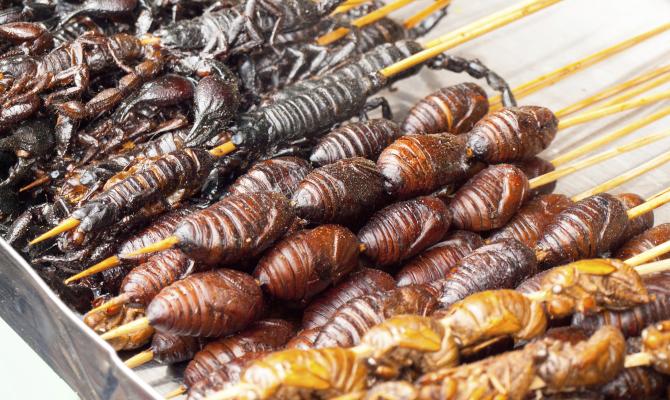 spiedini di insetti cucinati