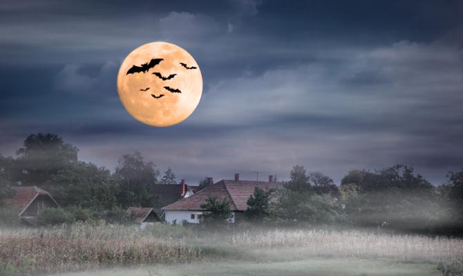 Halloween: gli eventi nelle città italiane