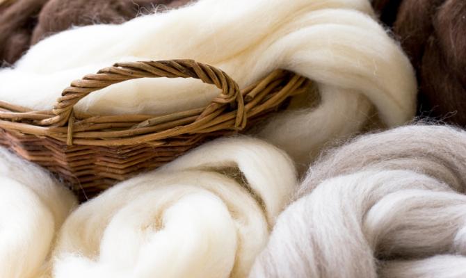 Si fa presto a dire lana