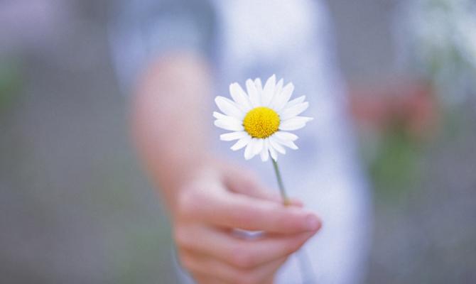 Donare un fiore