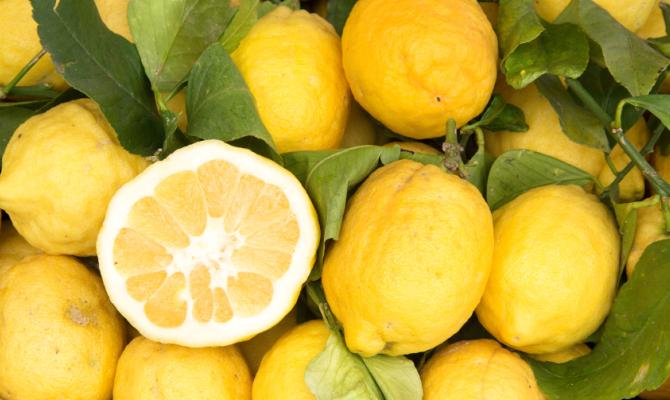 Tutta la qualità del limone di Sorrento