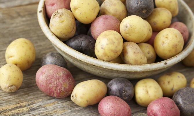 Patate in frigo meglio di no for Quando seminare le patate
