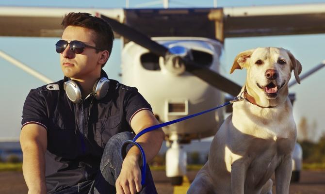 In viaggio con il proprio cane