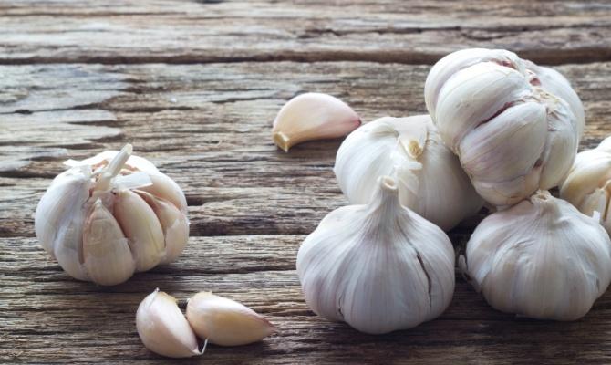 La passione racchiusa in uno spicchio di aglio
