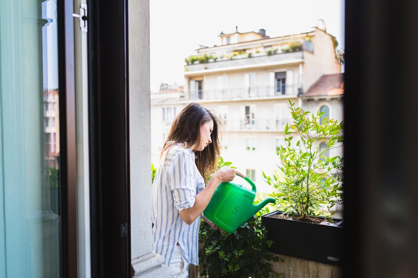 I nuovi vasi per il gardening domestico