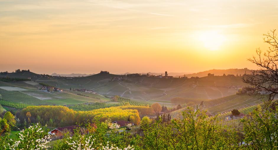 Dalle colline torinesi al Monferrato e poi a Le Langhe il passo è breve