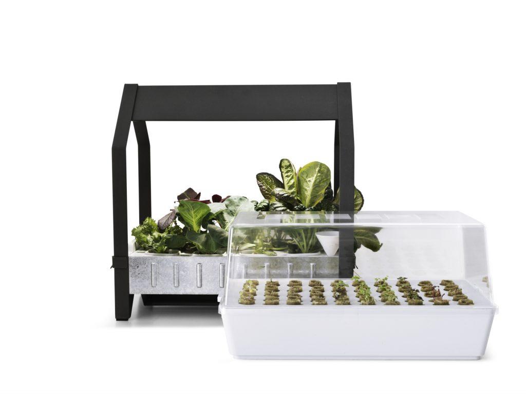 Orto idroponico ikea il kit per coltivare indoor www - Orto in casa ikea ...