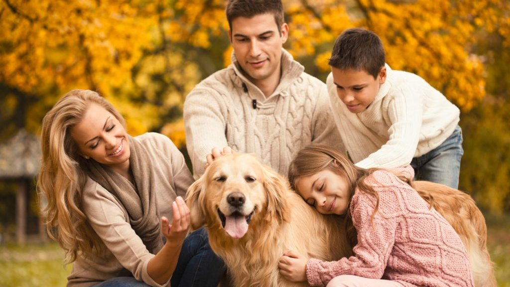 Animali domestici: fanno bene alla salute