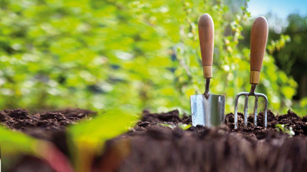 Città d'orti, il progetto che diffonde l'agricoltura urbana