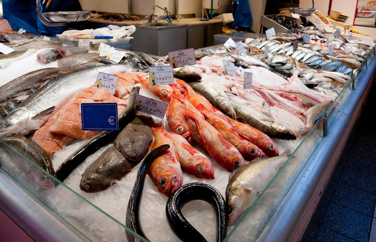 pesce contro junk food