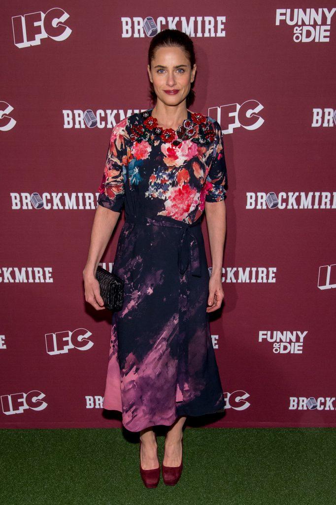 "Amanda Peet allo screening di ""Brockmire"" a New York. Photo by Roy Rochlin/FilmMagic"