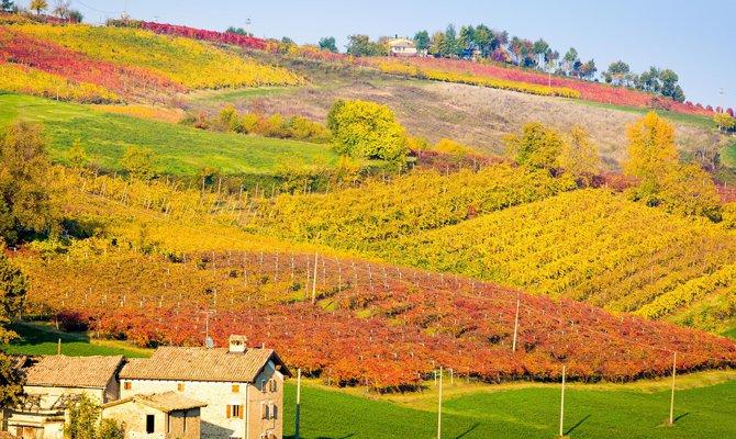 Vignola, provincia di Modena: tour per i Food Traveller