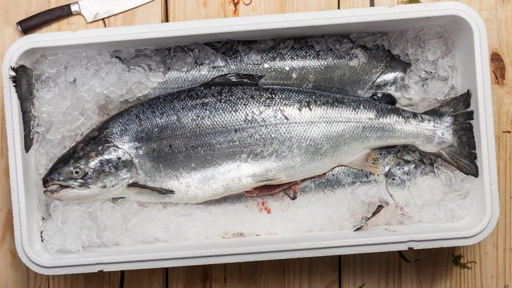 Pesce nel frigorifero: come conservarlo al meglio