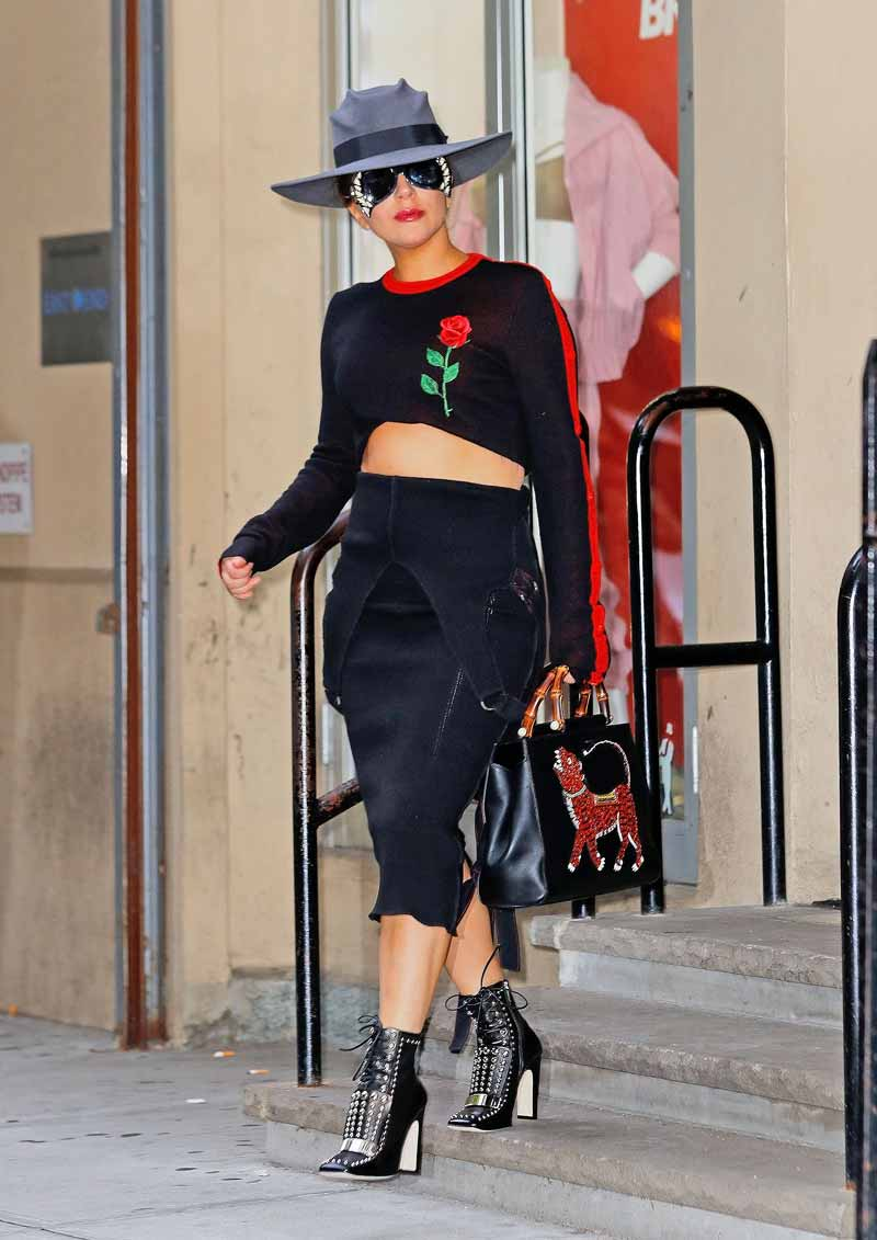 Lady Gaga, Germanotta