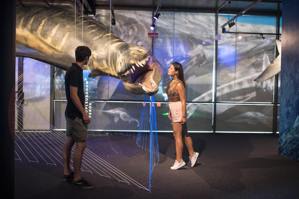 A Genova Paleoaquarium, il mare al tempo dei dinosauri