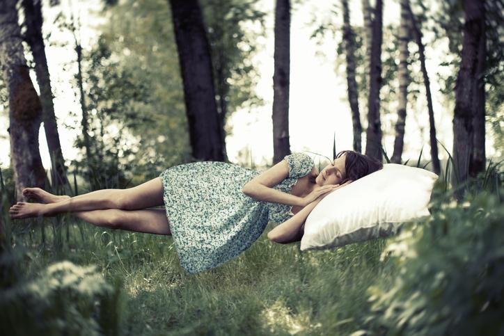 Calea zacatechichi, l'erba dei sogni lucidi