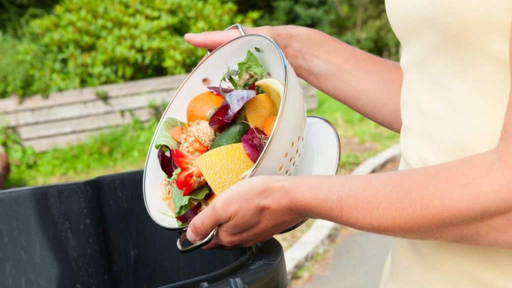 Scarti di cibo si trasformano in ingredienti salutari