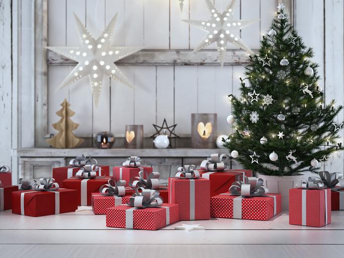 Come curare l'Albero di Natale a casa