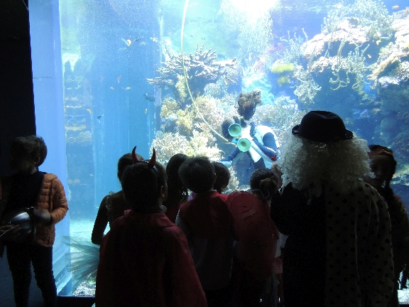 Pirati che approdano all'Acquario: succede a Genova