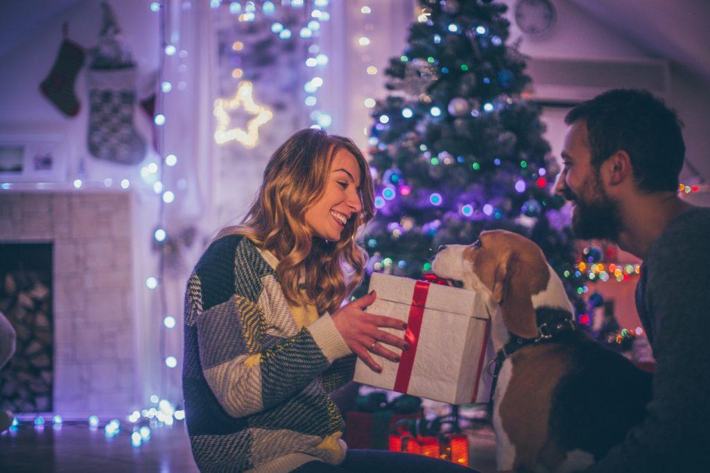 Amici pelosi in festa: il Natale degli animali domestici