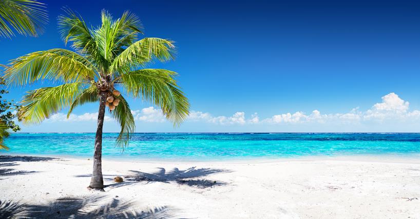 Wallpaper Caribbean Sea Beach Sunset Palm Trees Hd 5k: Spiagge Caraibiche: Si Scoprono Anche In Crociera