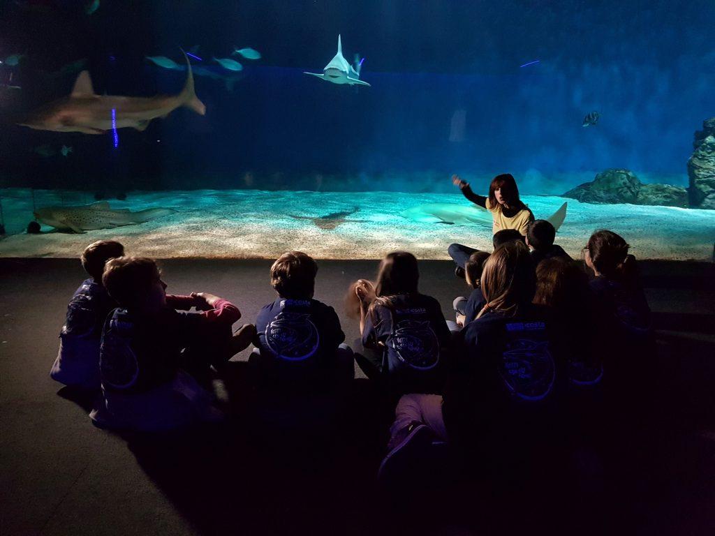 Notte con gli squali all'Acquario di Genova