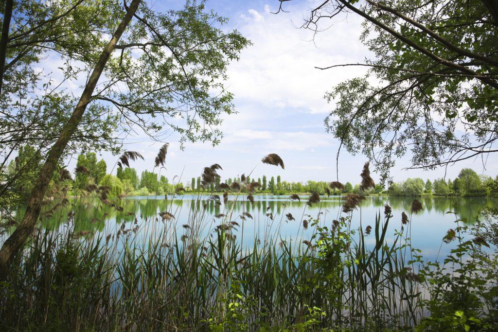 Primavera Slow sul Delta del Po