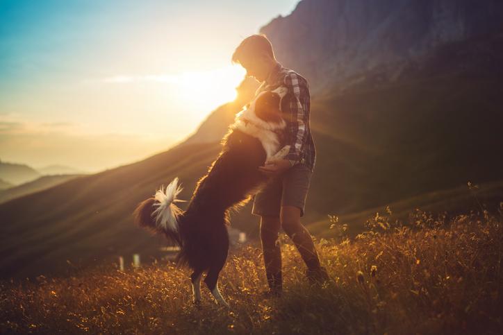 Perché fa così male perdere il proprio cane?