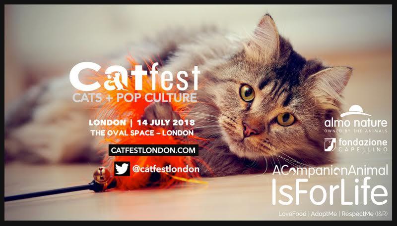 CatFest, a Londra il Festival dei Gatti