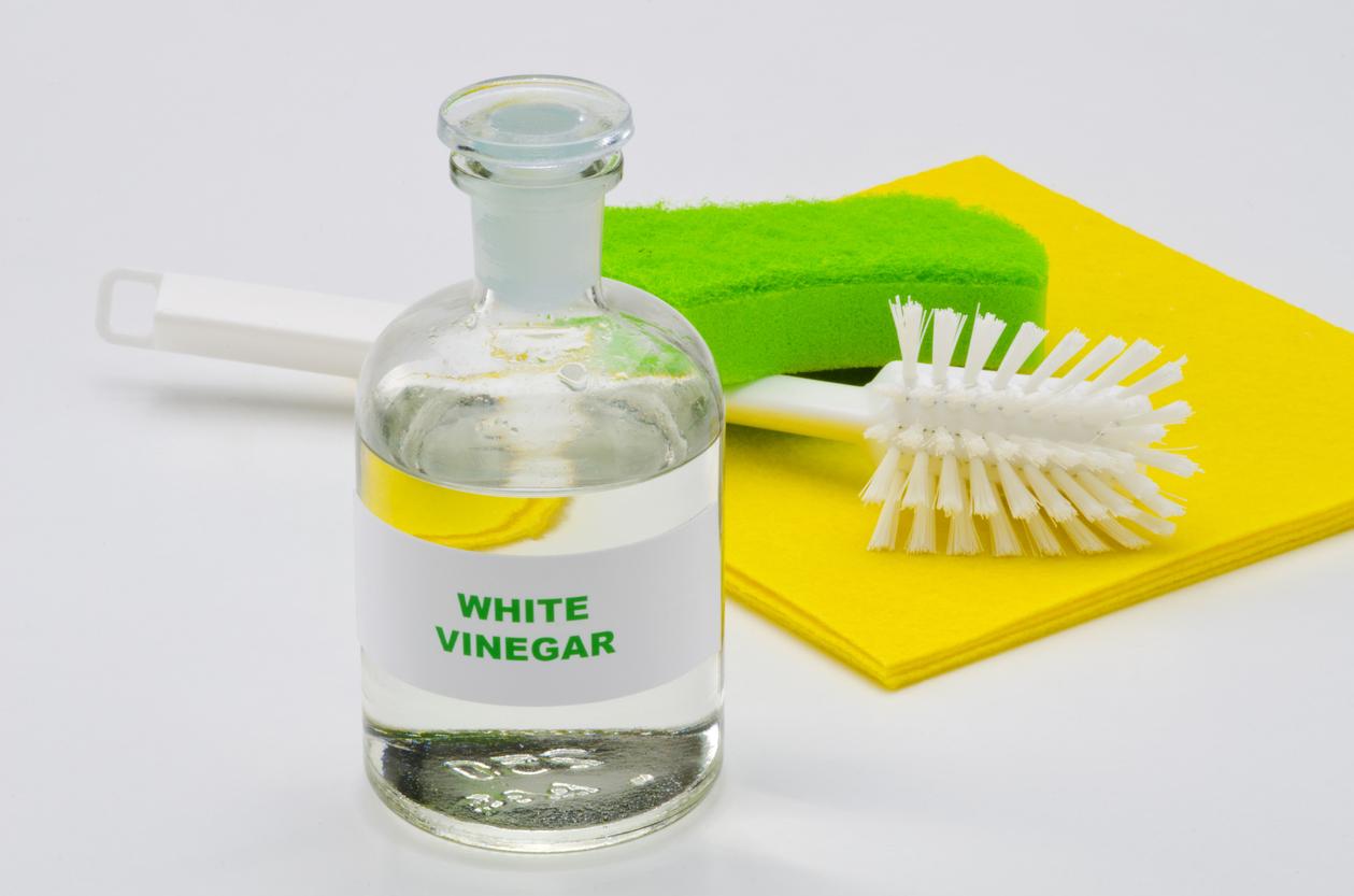 Pulire il bagno con laceto di vino bianco: trucchi e consigli