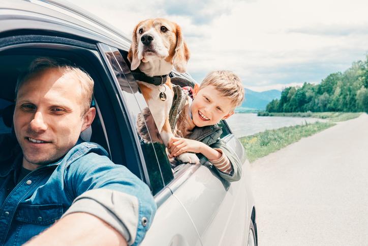 Ritratto della pet family contemporanea