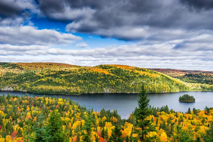 Foliage in Canada