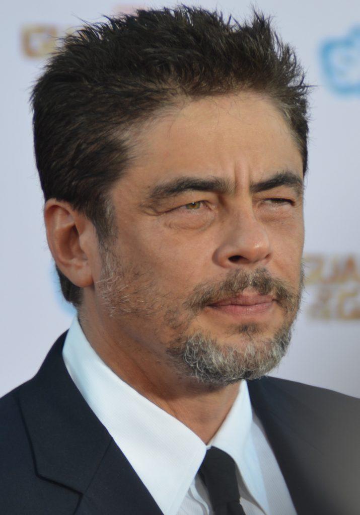 Attori scapoli, Benicio del Toro