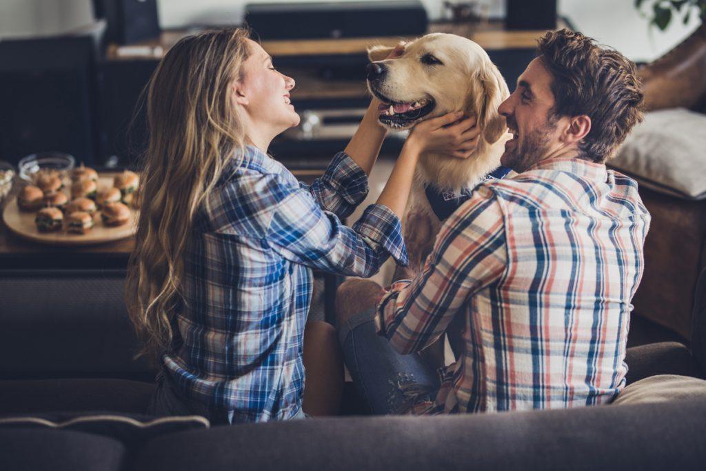 Gli animali domestici rendono più felici?