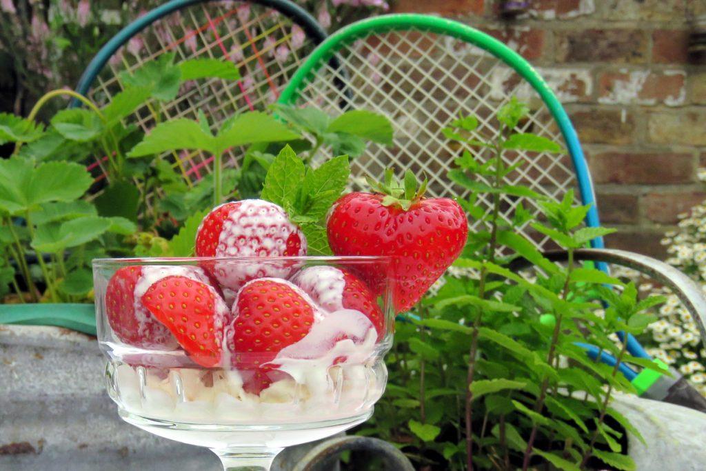Wimbledon, tra un dritto e un rovescio, fragole e panna vegan per tutti!