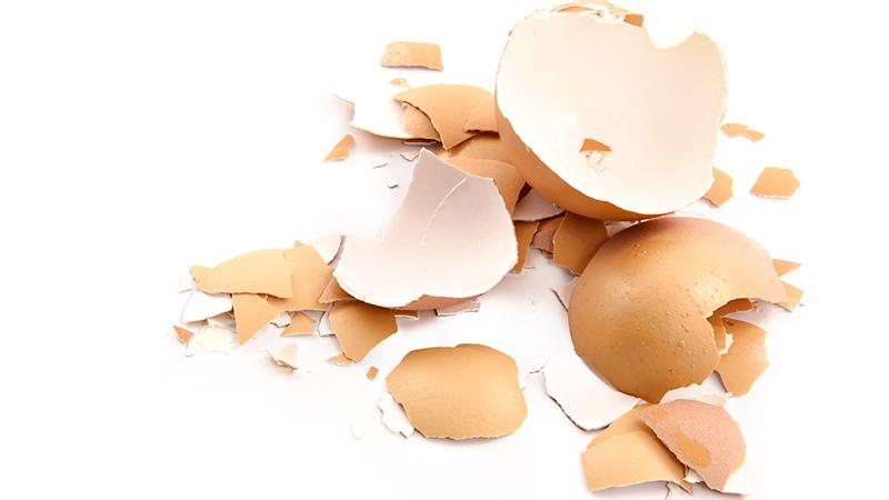 apparato osseo forte con i gusci delle uova