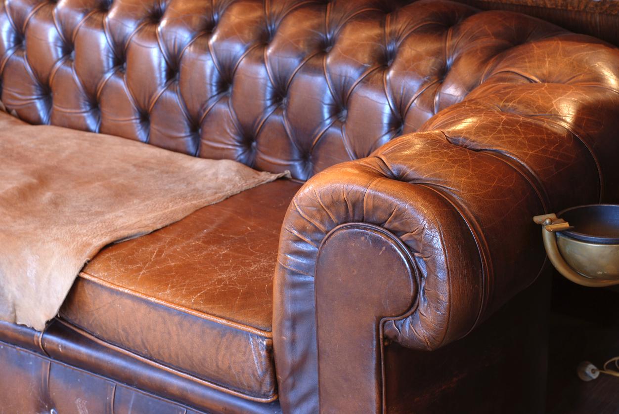 Pulire Divano In Pelle divano in pelle da pulire al meglio: i consigli degli esperti