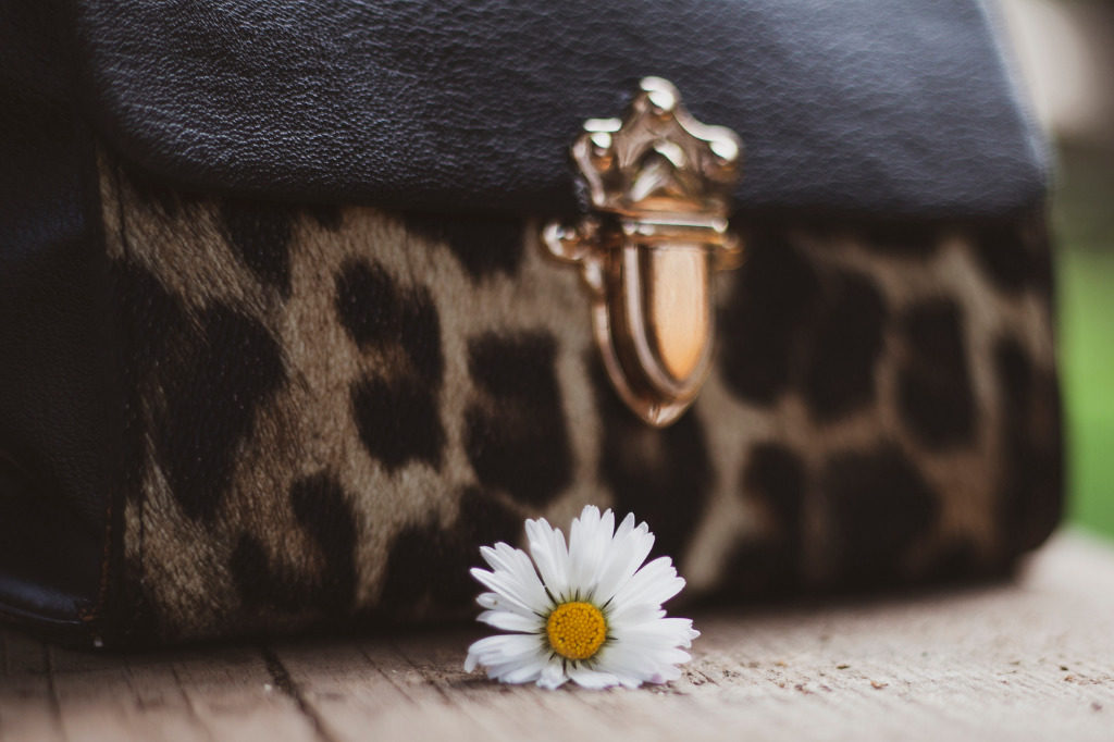 L'indomito fascino degli accessori animalier